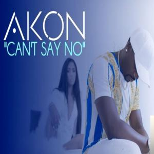 Can't Say No (2019)