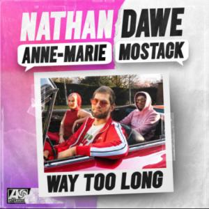 Way Too Long (feat Anne Marie, Mostack)