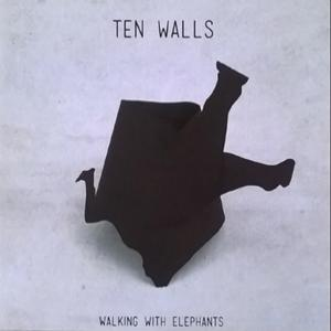 Walking with Elephants (2017)